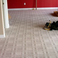 Bow/Wiggle In Carpet Pattern