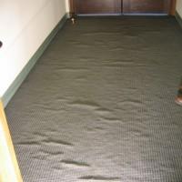 Carpet Ripples/Buckling