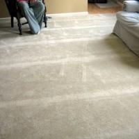 Crush Marks In Carpet