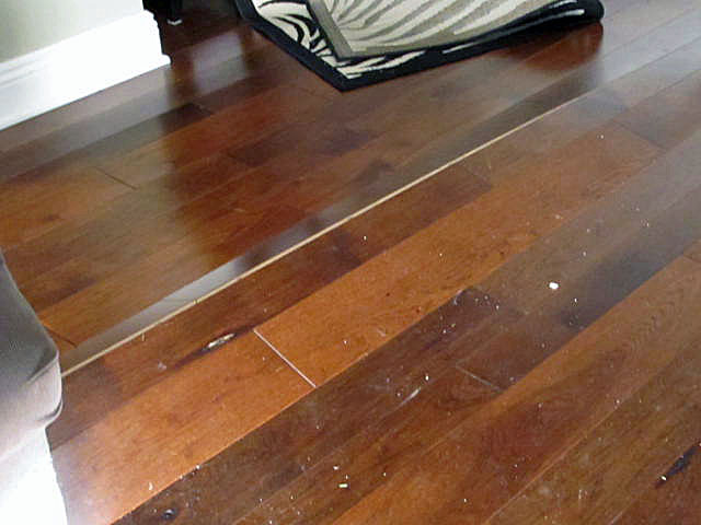 Hardwood Floor Buckling Buckled Wood Floor Solutions