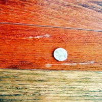 Exotic Hardwood Extractive Discolorations