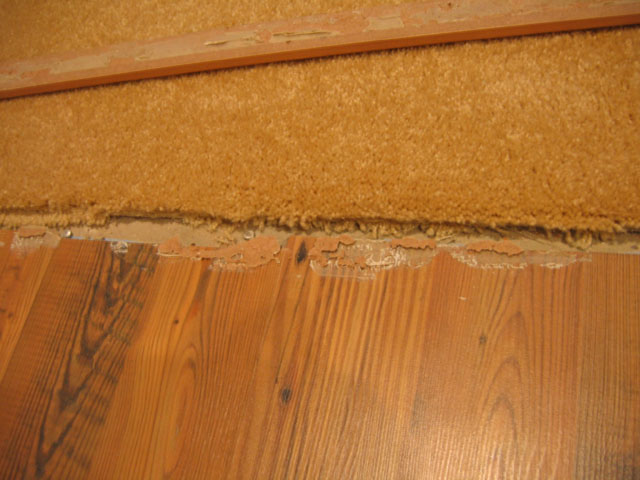 Wood Laminate Adhesive Types Of, Laminate Flooring Recall